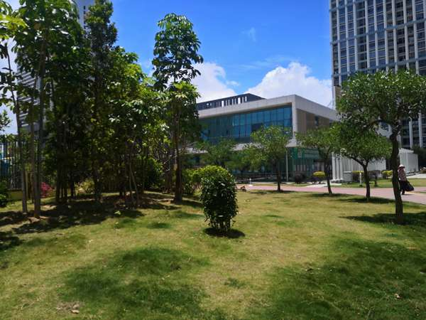一篇简短的文章告诉你如何轻松应对2021年广州市专利