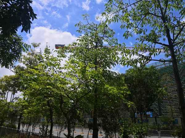 2021年杭州的专利
